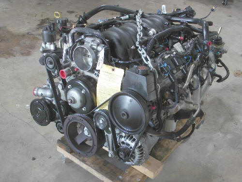LS1 with T56 pullout